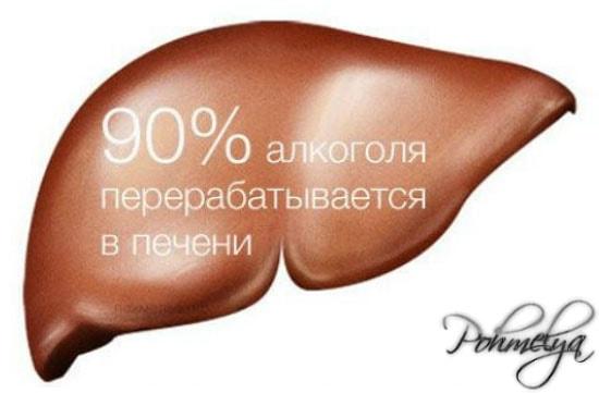 Как спасти печень от алкоголизма иглотерапия лечение алкоголизма Москве