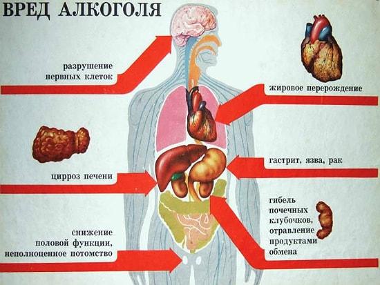 организма сколько алкоголь из мужчины выводится-3