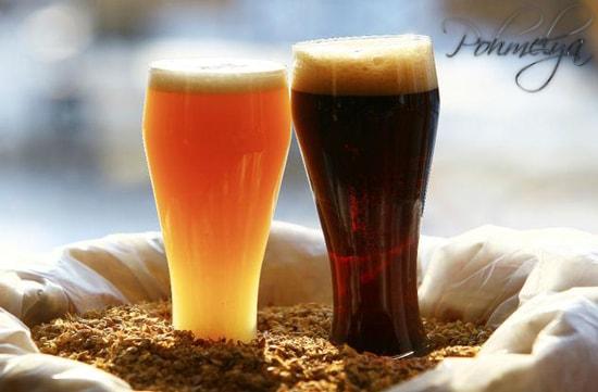 Kreproe pivo45100
