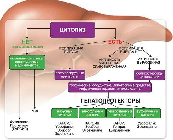 gepatoprotektory pohmelya b114 min