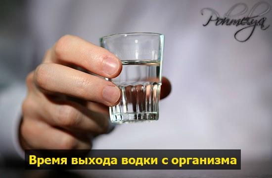 vodka vuvod pohmelya b158 min
