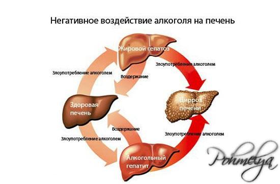 vozdeistvie alkogolya na pechen pohmelya n442 min