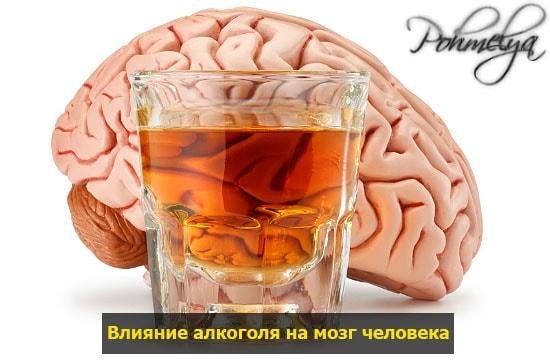 vlianie alkogolya na mozg pohmelya v152 min