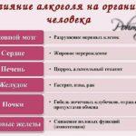vlianie alkogolya na organizm cheloveka pohmelya n571 min