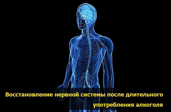 vosstanovlenie nervnoi sistemu pohmelya v398 min