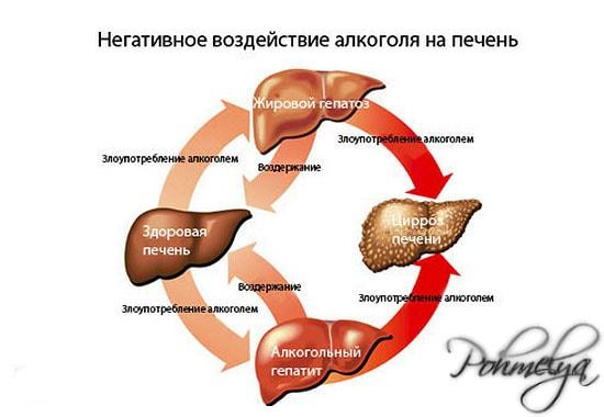vosstanovlenie pecheni ot alkogolya pohmelya v396 min