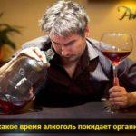vremya vuhoda alcohola pohmelya v721 min
