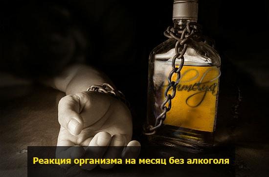 Что будет если не пить
