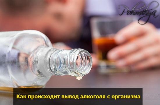 process ochishenia organizma ot alkogolya pohmelya v2092 min