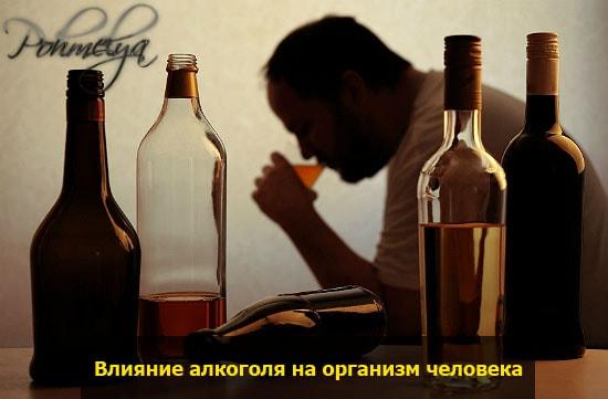 mnenie o alkogole pohmelya v2423 min