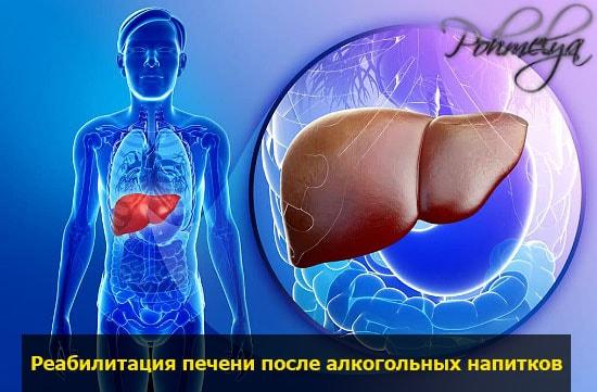 profilactika pecheni pohmelya v2523 min