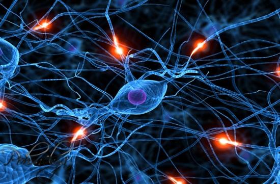 nervnaya sistema pohmelya