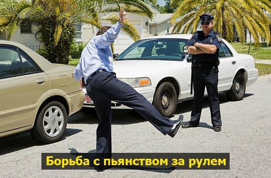 borba s puanumi voditelami pohmelya b133 min