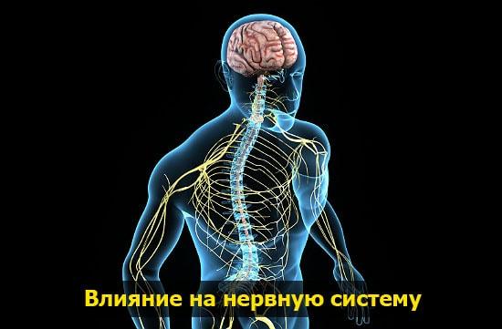 nervnaya sistema pohmelya b195 min