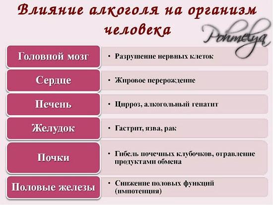 alkogol i organizm vlianie pohmelya n933 min