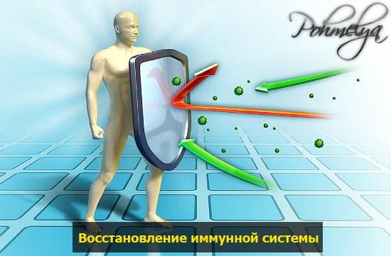immunnaya sistema pohmelya n616 min min