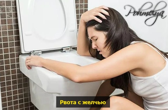 rvota s jelochy pohmelya n781 min