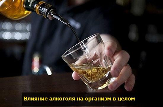 alcohol vozdeistvie na cheloveka pohmelya v811 min
