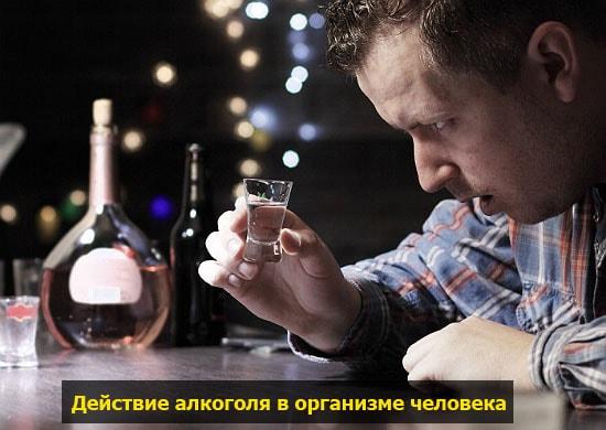 alkogol v organizme pohmelya v722 min