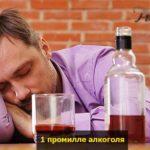 promille alkogolya pohmelya v1461 min