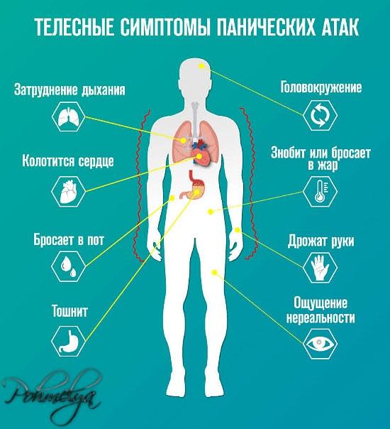 simptomu panicheskih atak pohmelya v1772 min