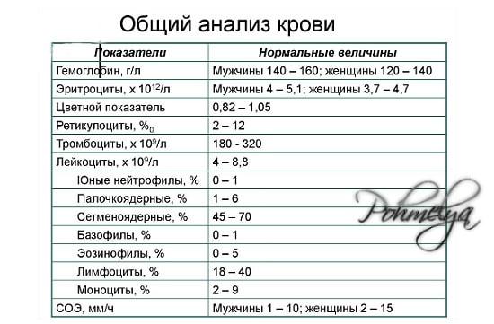 obshiy analis krovi pohmelya v2345 min